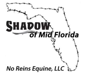 shadowmidflorida.com
