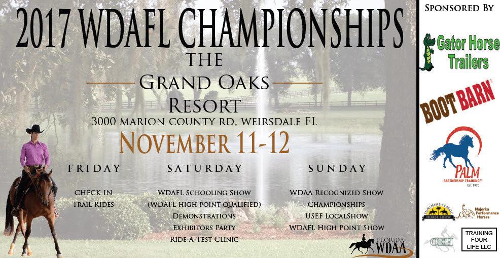 2017 WDAFL Championships